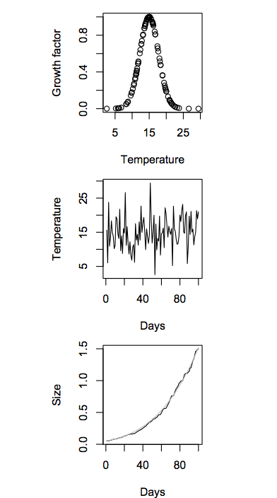 Growth is sensitive to temperature (top) and temperature varies each day (middle). This means that the growth curve wobbles around the mean value (bottom).